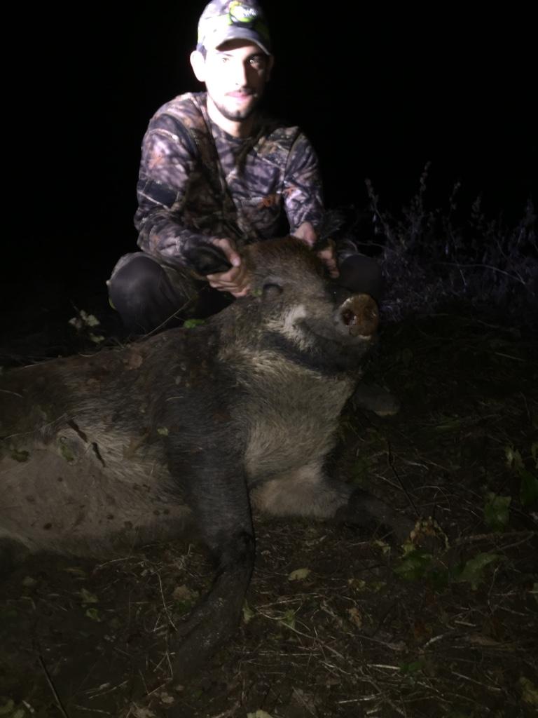 1st Hog on WW