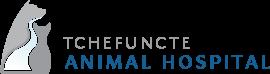 Scroll Logo