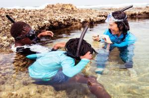 Nine Ocean Conservation Groups