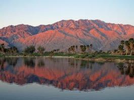 TOTW-Palm-Springs-thumb-265x198