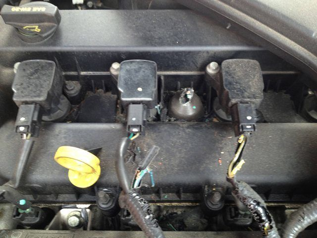 How-To-Stop-Rats-Mice-And-Other-Rodents-Eating-Car-Wiring-Wire-Damage