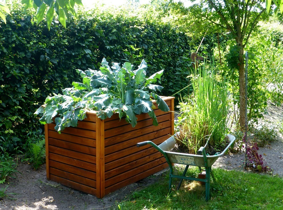 Keeping-Pest-Animals-Out-of-Your-Garden-Raised-Garden-Bed
