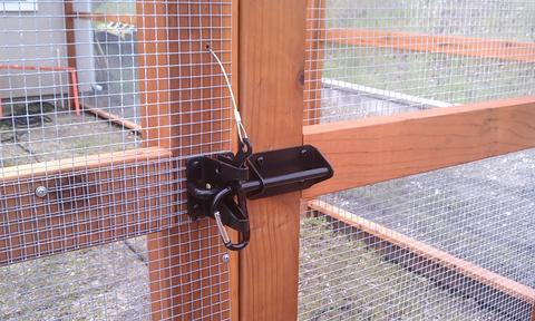 chicken-coop-lock-latch_large