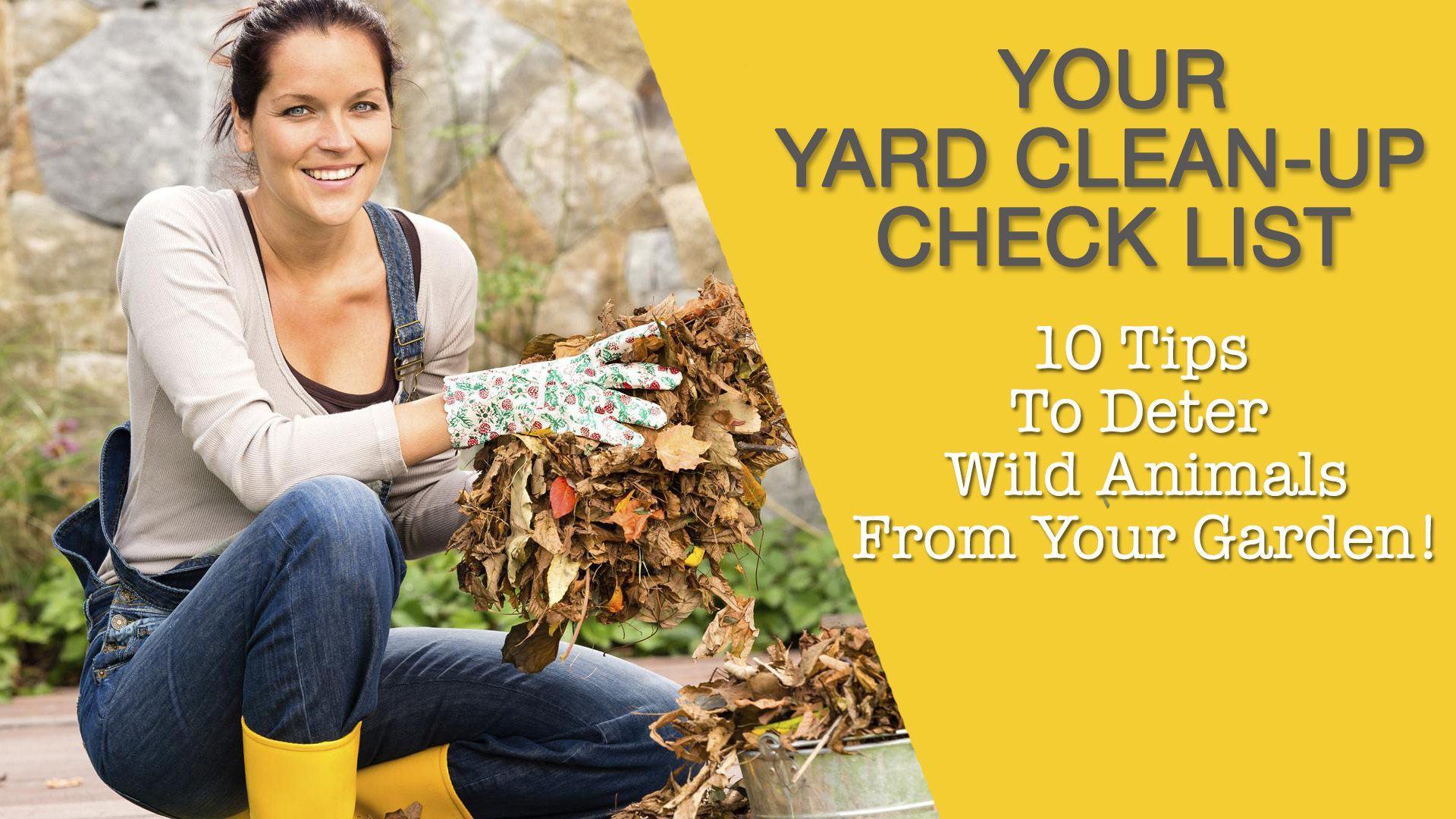 yard-clean-up-checklist